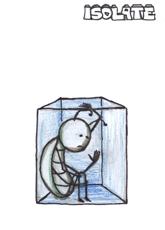 Isolate - RIMGEN card